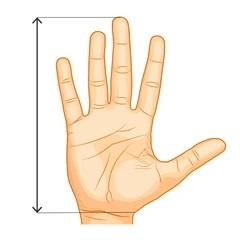 Veľkosti rukavíc Knapper